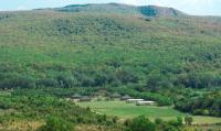 Парк-отель «Зелёные холмы» (загородная база отдыха) - база отдыха